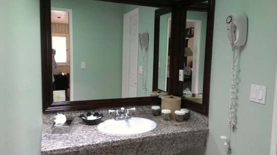 Carousel Inn and Suites: Great sink/vanity area