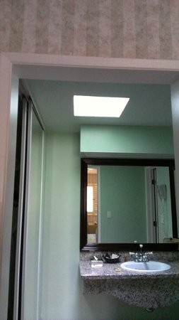 Carousel Inn and Suites: Nice skylight above vanity area