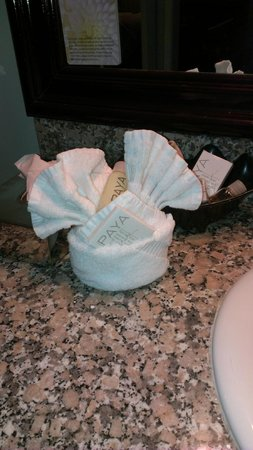 Carousel Inn and Suites: Towels with soap & lotion