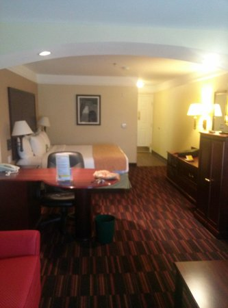San Mateo Inn & Suites: Has chairs, desk area, love seat, bed, fridge, micro