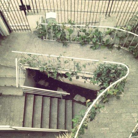 Knock Knock Hostel Curitiba: Lindo