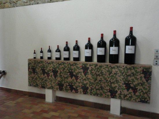 Ophorus Bordeaux Wine Day Tours : Bottle varieties