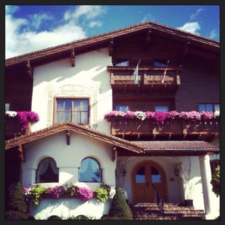 Abendblume: Charming inn!!