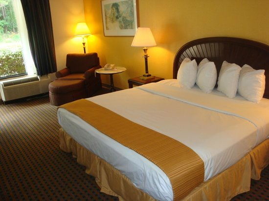 Econo Lodge Inn & Suites: Our king size room with desk area as well as a chase & lounge to relax