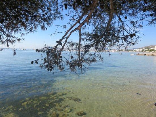 Mar Senses Puerto de Pollença: Pine Walk