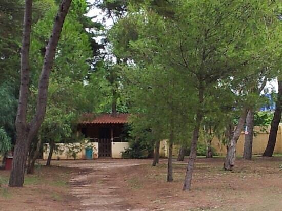 Camping Village Sentinella: Rudy
