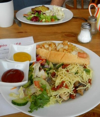 Vegetopia Cafe: Hot dog, scrummy salad and a cheesy nut roast.....
