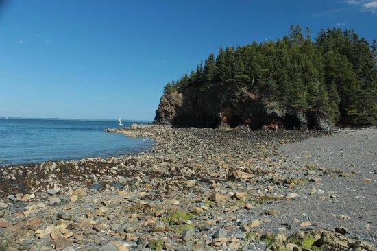 Owls Head Lighthouse: Rocky beach adjacent to lighthouse