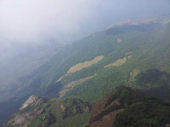 Agastya Mala: Near the top of Agasthya Mala