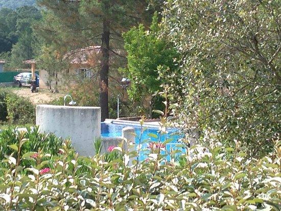 Residence Pino d'Oru : piscina dal villino