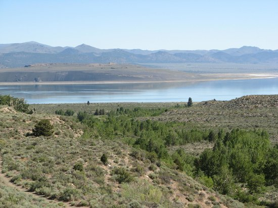 Yosemite Gateway Motel: View of Mono Lake from the motel