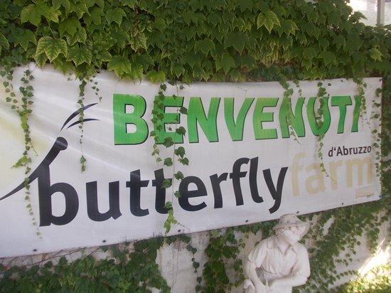butterfly farm dabruzzo region - photo#18