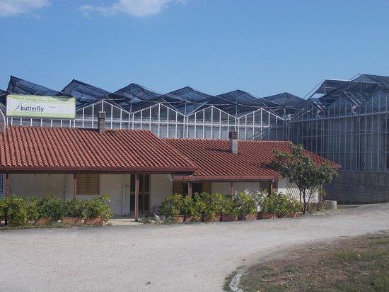 Butterfly Farm d'Abruzzo