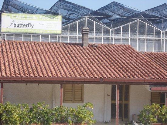 butterfly farm dabruzzo region - photo#8