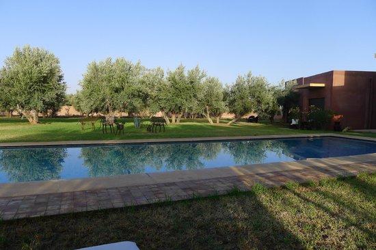 Villa Al Byda: Le calme