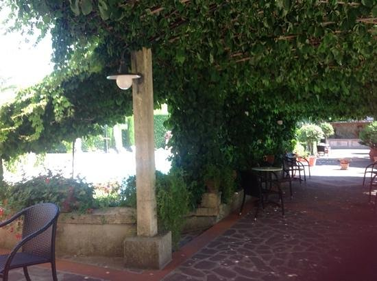 Albergo Roma: shaded patio at back door