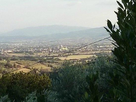 Agriturismo Locanda dell'Angelo : Panorama