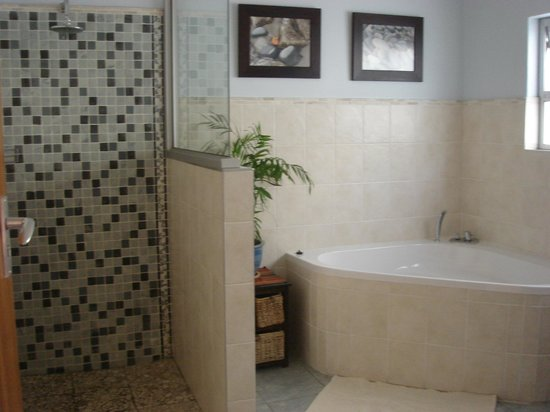 Rivendell Guest House : Bath and shower