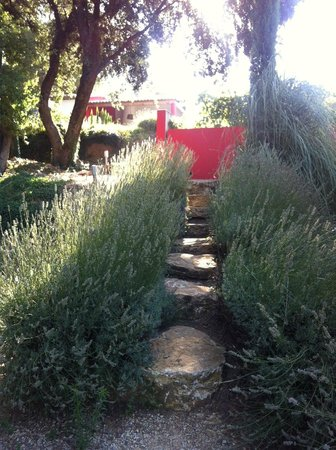 Dar Mona: Rustic steps (the better ones)