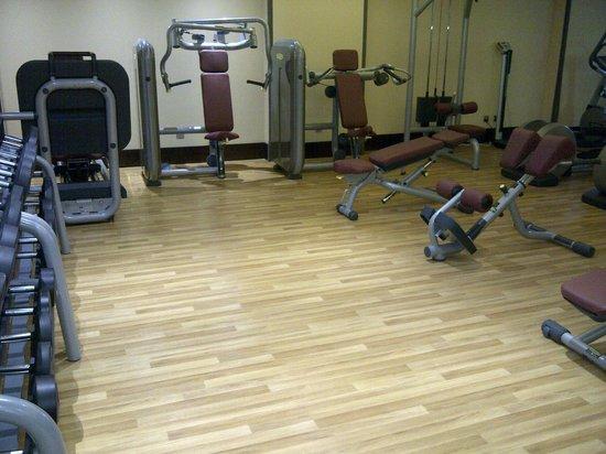 Copthorne Hotel Sharjah: Gym