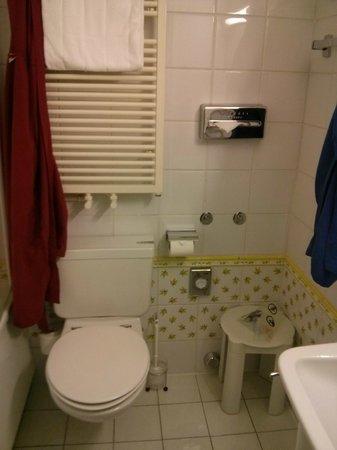 Suisse Hotel : Bagno camera 510