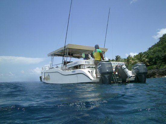 Turtle Dive Center: New Turtle Dive Boat