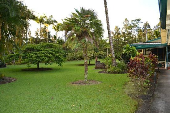Hale Moana Bed & Breakfast: More backyard delights