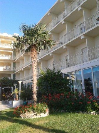 Miramare Hotel & Spa: vista della parte interna dell'Hotel, dal giardino.