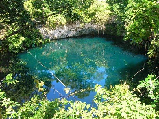 Turtle Dive Center: Laguna DuDu