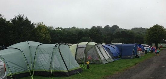Budle Bay Campsite: Our Tents pitched . . . in a long line