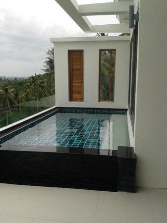 Tropical Sea View Residence: Бассейн на террасе, индивидуальный