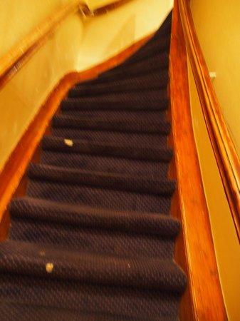 Sara's Boutique Hotel: 階段は急で狭い アムスならでは