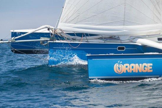 Pierpont Performance Sailing: Orange (Contour 34 trimaran)