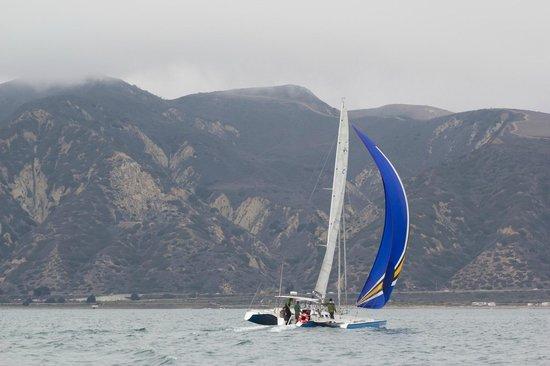 Pierpont Performance Sailing: Santa Cruz Island charter