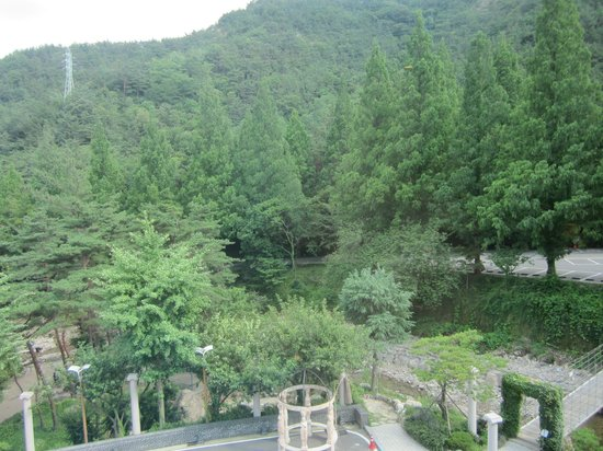 Hotel Geumosan: View from our room  (Over Restaurant)