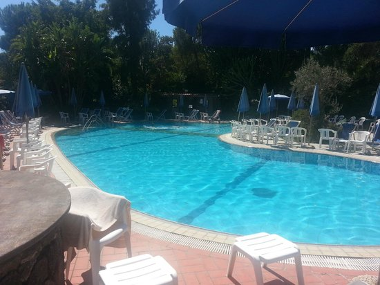 Hotel Pineta : Piscina