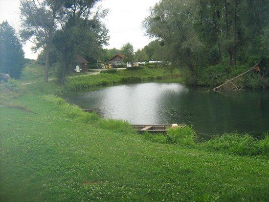 Camping & Pension Au an der Donau: nice setting