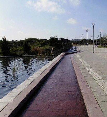 Heartlands: water feature