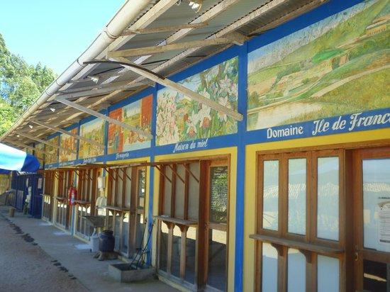 Chez Domaine - Hospedagem Rural Orgânica: locais de fabricação dos produtos do hotel, queijos, iogurtes, pães, sorvetes,etc