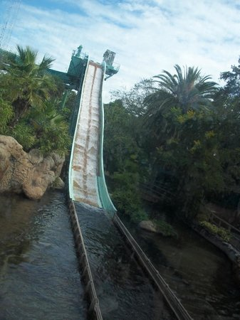 Water Ride You Will Get Wet Picture Of Busch Gardens