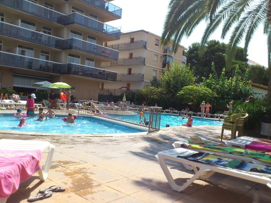 Aparthotel CYE Holiday Centre: View from sun lounger