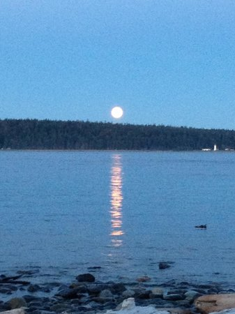 Driftwood by the Sea Inn and RV Resort: August 2013 - blue moon rising!