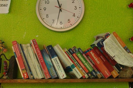 Iguana Hostel: Large range of travel books