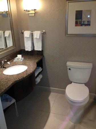 Hilton Garden Inn Toronto Downtown: Bathroom
