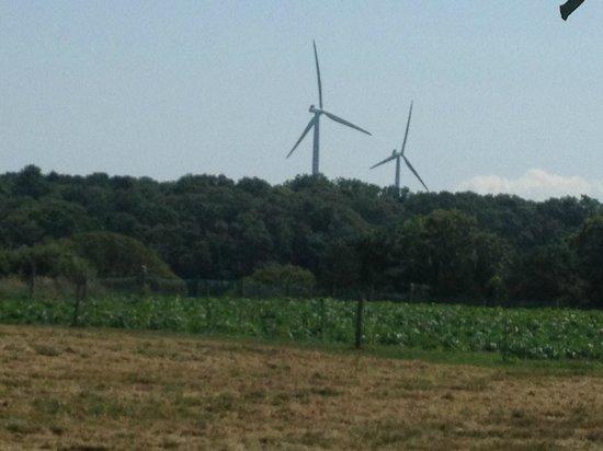 Shining Sea Bikeway: windmills in the distance from Bourne Farm