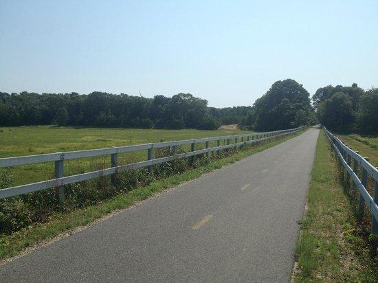 Shining Sea Bikeway: Cranberry Bog
