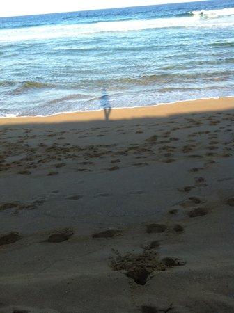 Mercure Gerringong Resort: werri beach