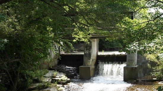 Inglis Falls : Small falls at lake
