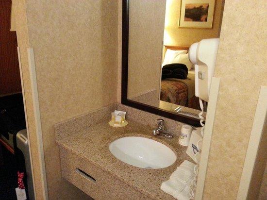 Days Inn & Suites Plattsburgh : Coin vanité