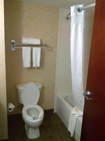 Holiday Inn Norton: bathroom